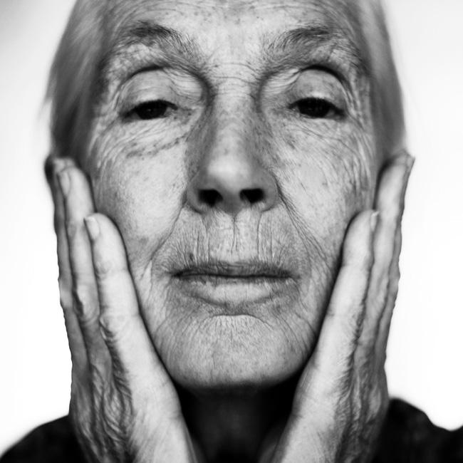 Jane Goodall_00003