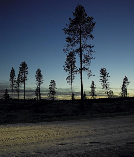 Schweden_Lappland_00035