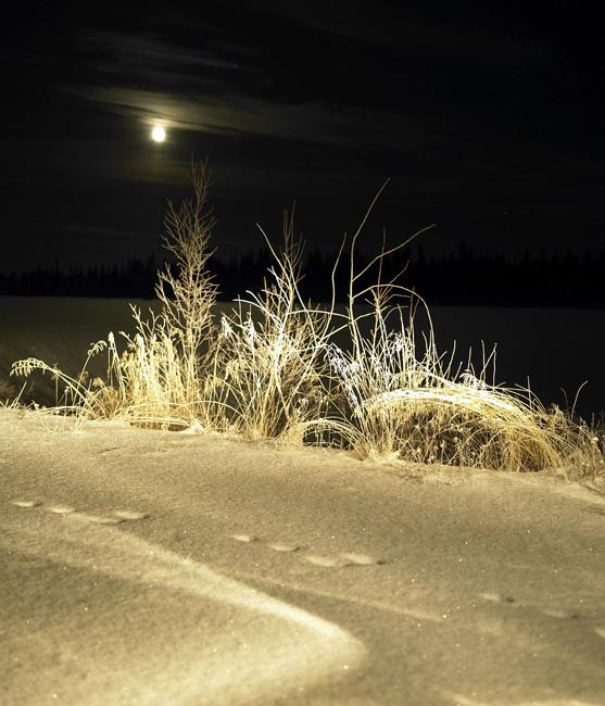 Schweden_Lappland_00039