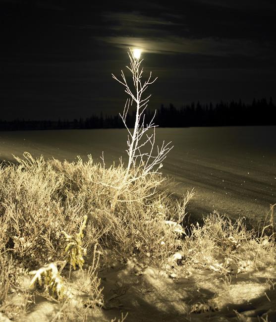 Schweden_Lappland_00041