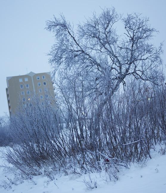 Schweden_Lappland_00056