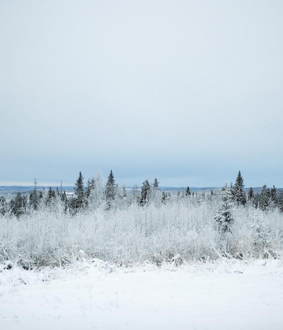 Schweden_Lappland_00184