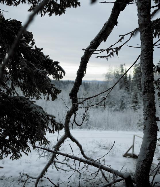 Schweden_Lappland_00189