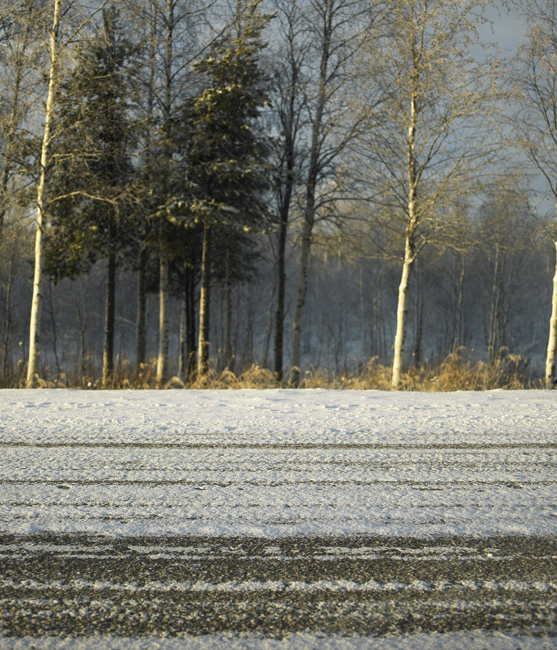 Schweden_Lappland_00191